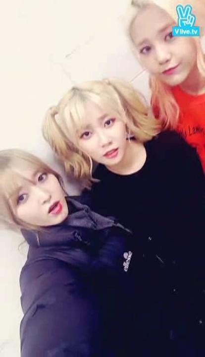 AOA 크림 막방기념 깜짝 라이브♡