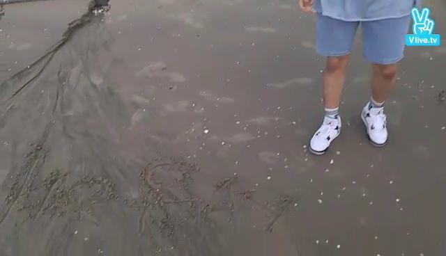 [IMFACT] 임팩트와 함께 바다를 보아요♥