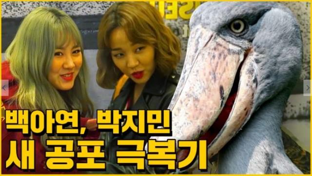 [매떠여 시즌3] Baek a yeon , Park ji min /  Ep.04 말 안듣는 동생과 힘든 언니의 서산 여행 :)