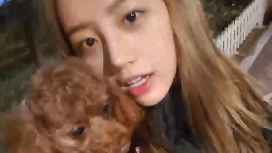 [Girl's Day] 혜리 댕댕이 호두의 마이웨이(Hyeri's puppy Hodu)