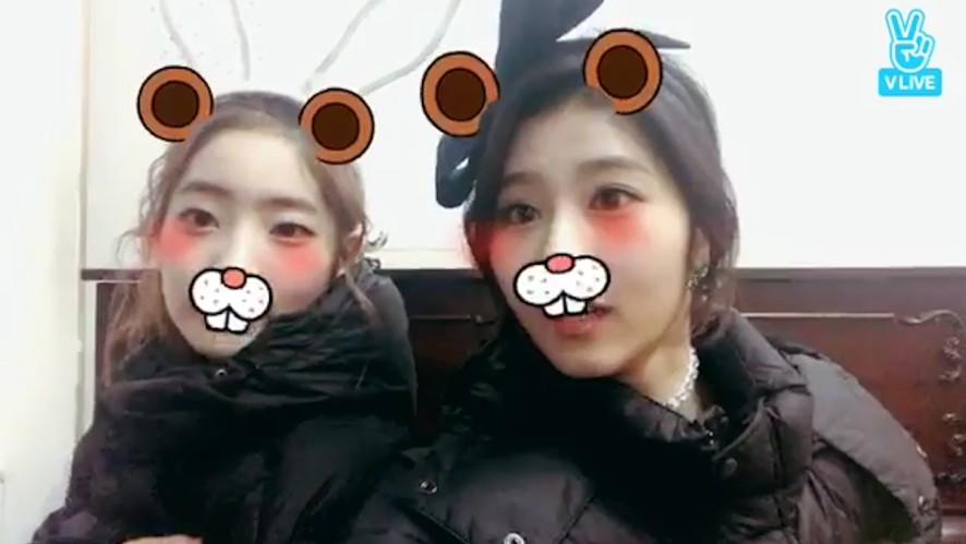 [TWICE] 널리 알려져야 할 사이다의 귀여움TT(The Cuteness of Sana&Dahyun)