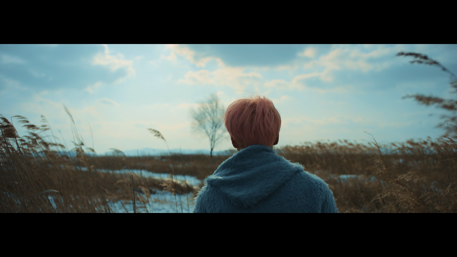 BTS '봄날 (Spring Day)' MV Teaser