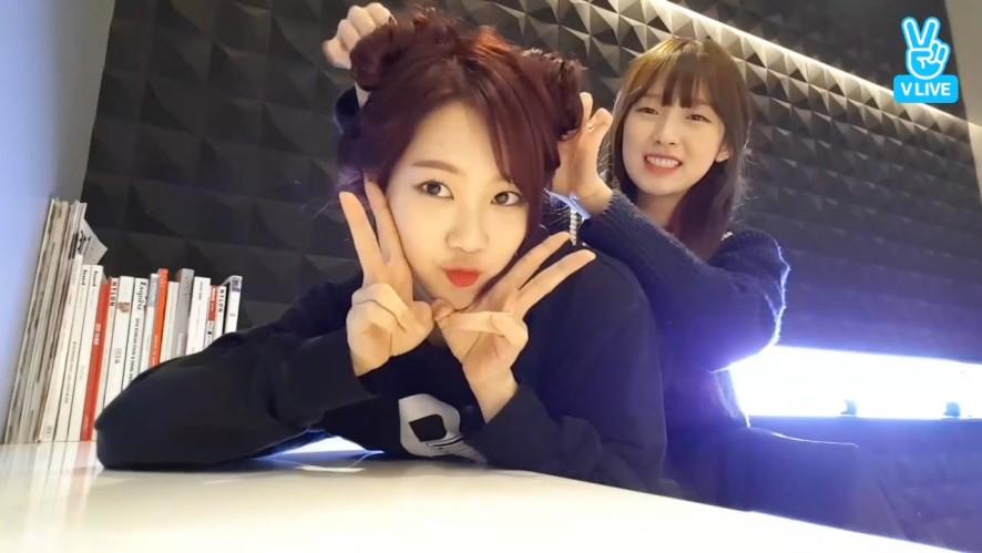 [OH MY GIRL] 경력2분차 아린쌤의 만두지호❣️ (Jiho's new hair style by Arin)