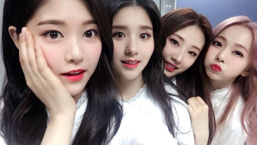 [이달의 소녀 1/3] 알 수 없는 비밀이 밝혀진 오늘!?💕