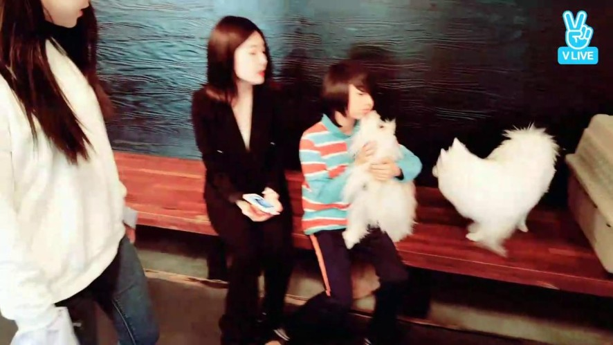 [Live] 워너비 린아,로은 개라모르겠다~ 😆