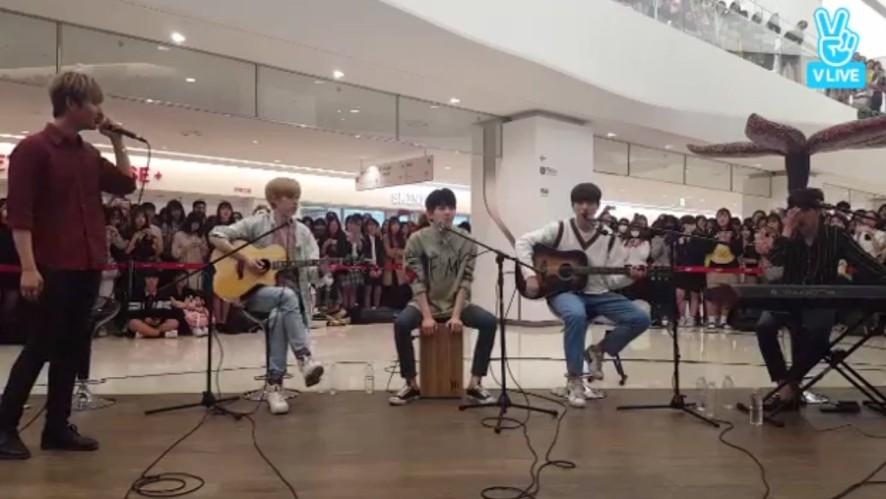 [DAY6] 팬들과 동심일체를 보여준 데식이들🎶 (DAY6's busking)