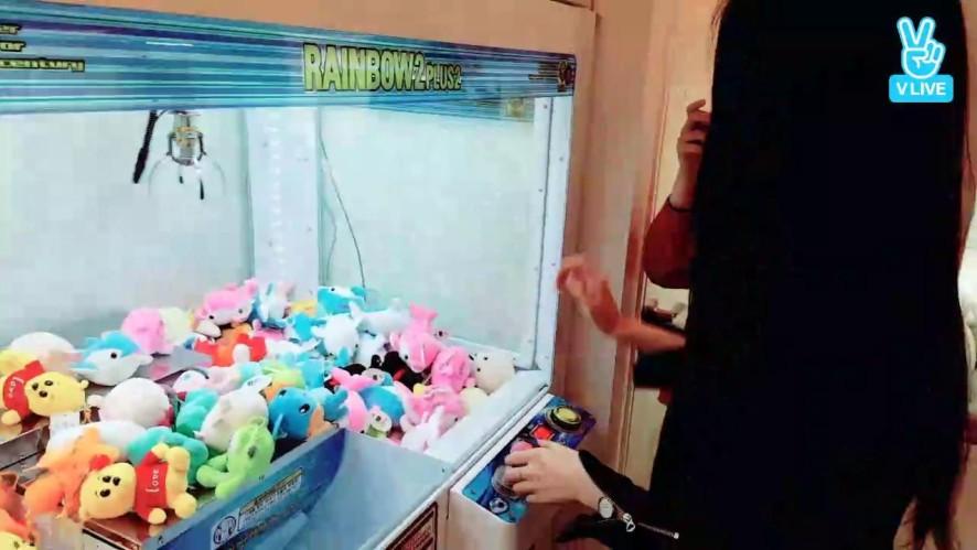 [Live] 아미와은솜이 가로수길 탐방~💕