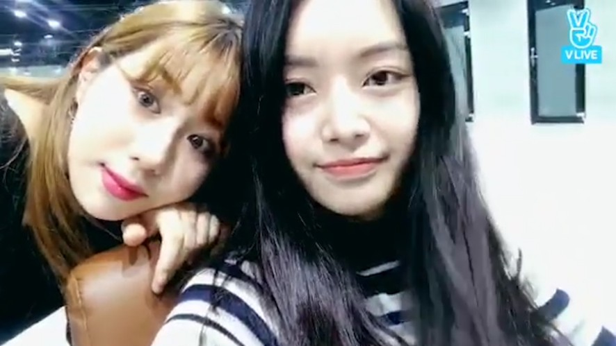 [Wassup] 아랔잇랔잇랔잇라잌 도비TV🐶  (Jiae's puppy Dobby)