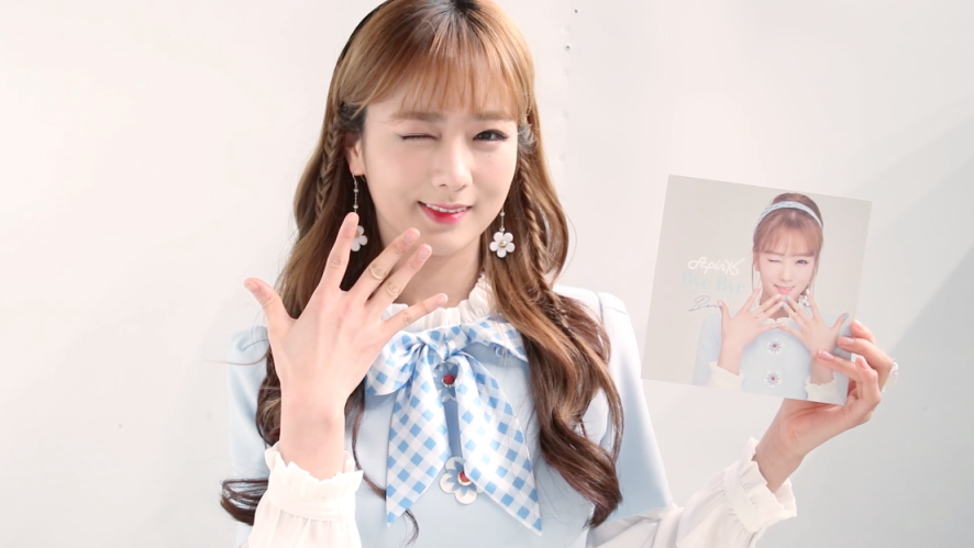 Apink Diary4 EP.04 (Fanmeeting in Japan)