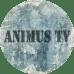ANIMUS TV