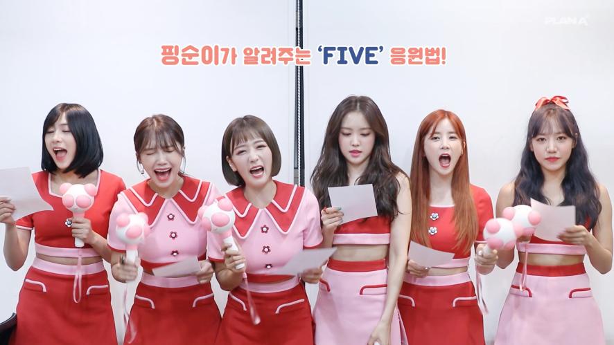 Apink 에이핑크의 'FIVE' 응원법 알려주기