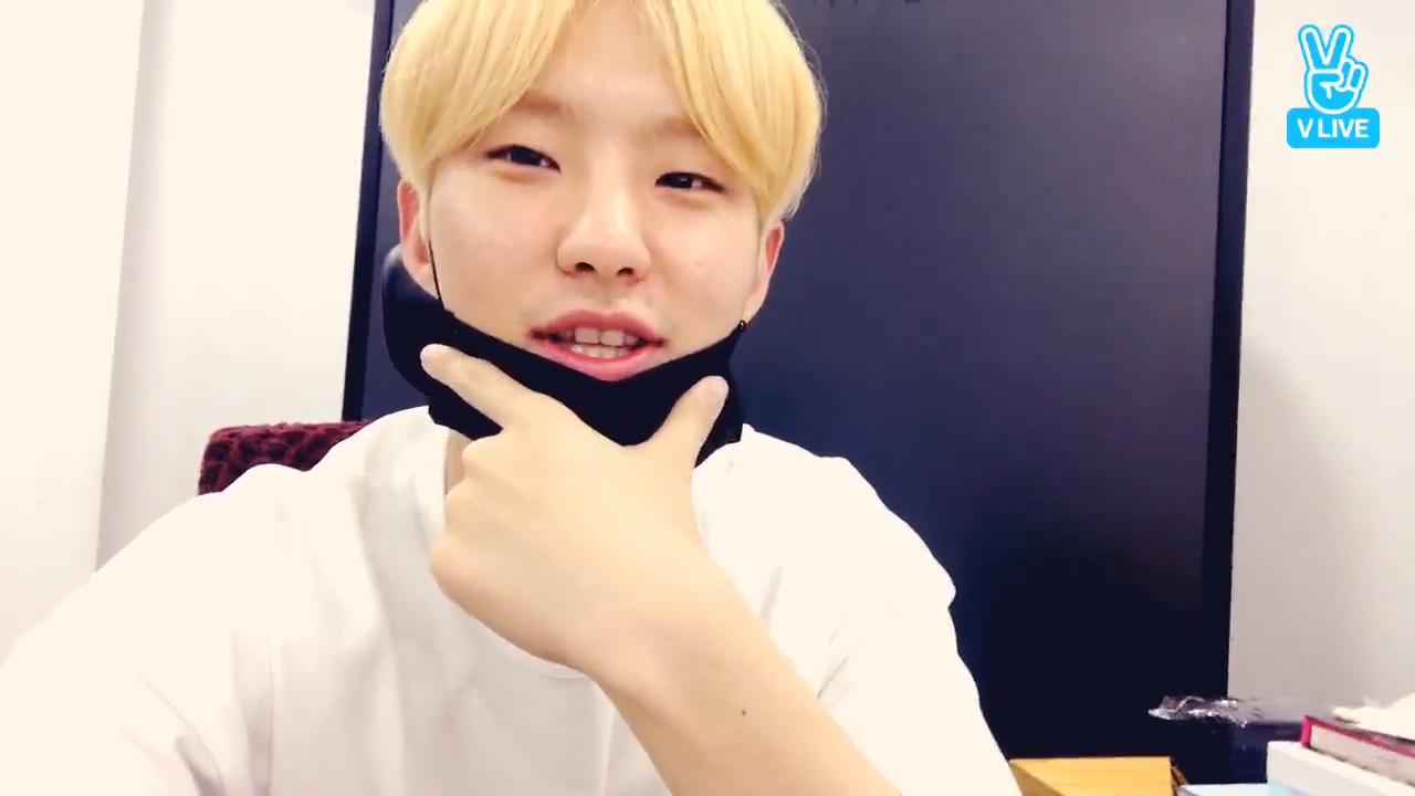 [SEVENTEEN] 호시왕댯님의 모든 말투를 사랑한댜🐹👑 (Prince HOSHI is so lovely)