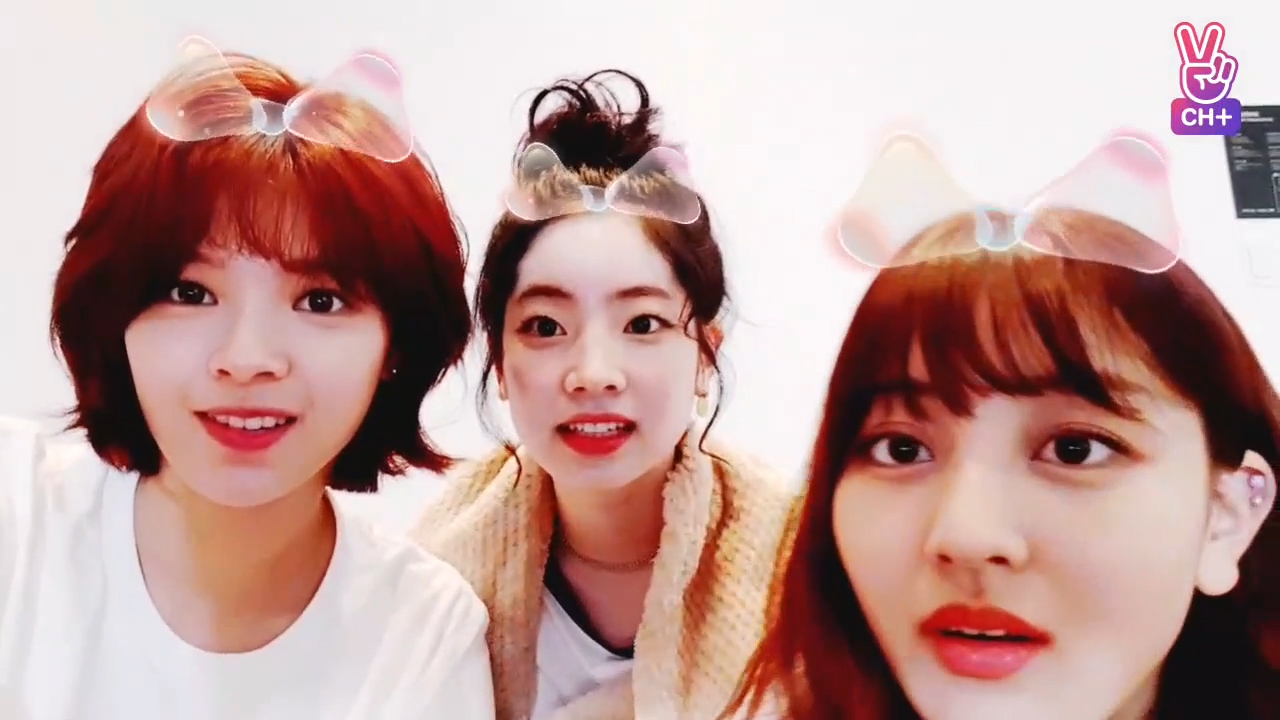 [CH+ mini replay] 훗 Hoot