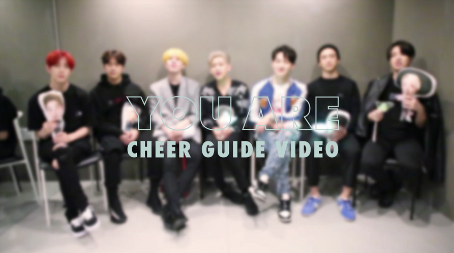 "GOT7(갓세븐) ""You Are"" Cheer Guide Video"