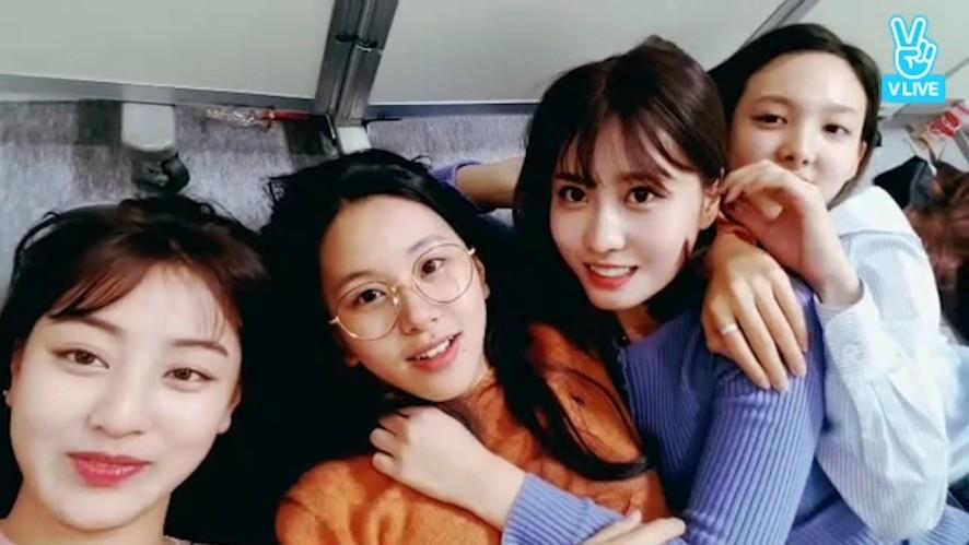[TWICE] 트둥이들의 엄웃 ~더빙 극장~ (TWICE's super cute dubbing)