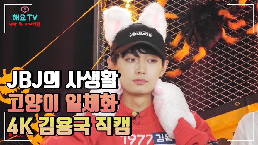 [김용국 4K 직캠] 고양이가 사람으로 태어나면 용국이겠지? @해요TV JBJ의 사생활