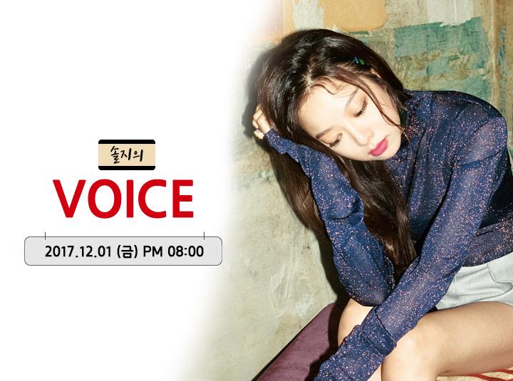 솔지의 VOICE #5
