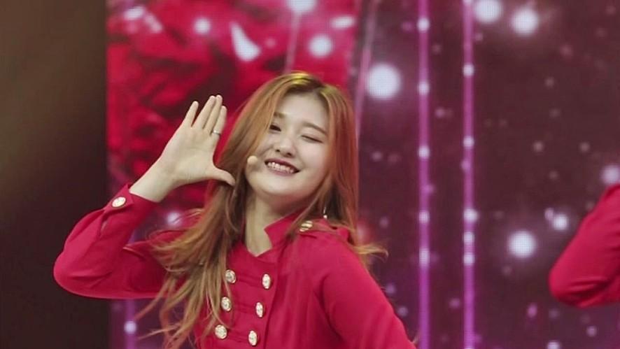 고아라 | 행운의 여신 - 소원을 말해봐(소녀시대) | 포메이션 배틀 직캠