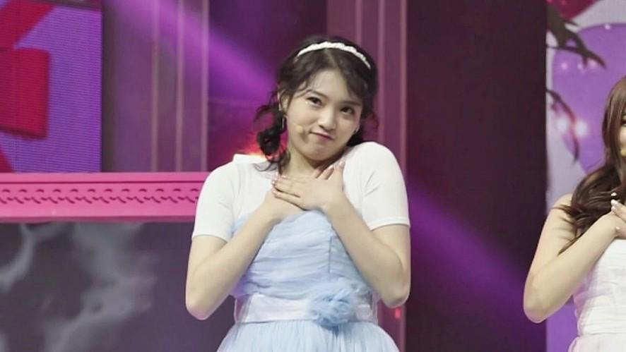 김다윤 | 꿀잠 - Honey(카라) | 포메이션 배틀 직캠