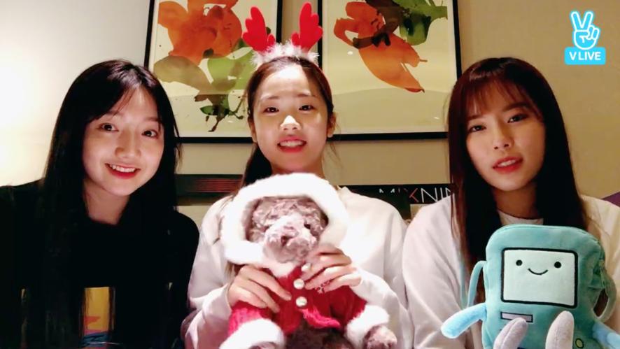 박해영, 최하영, 유진경 🎄Merry Christmas! 소년X소녀 릴레이 라이브☃️