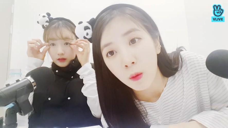 [Apink] 초봄의 핑스 스포 잊어버리지마~ 약속💞 (Apink's concert spoiler)