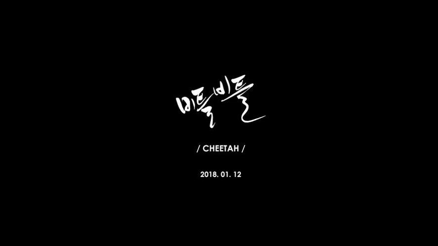 치타(CHEETAH) -'비틀비틀' M/V Teaser