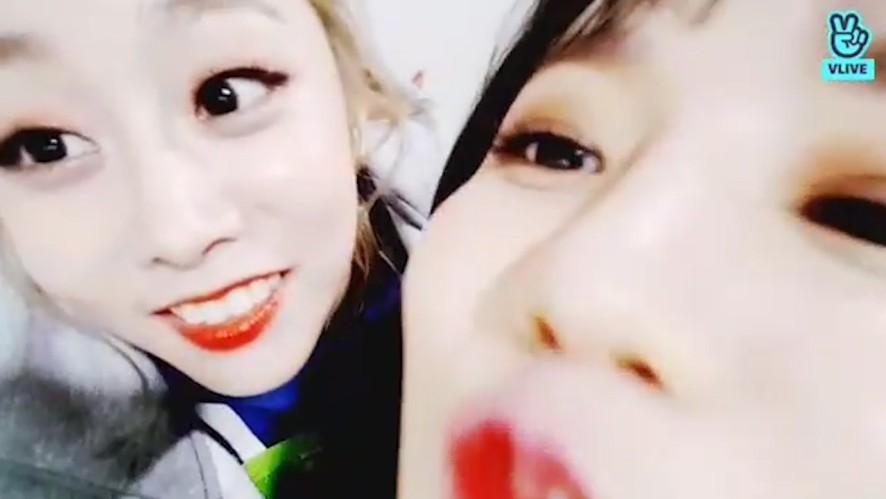 [LOVELYZ] 럽둥이들 예쁘고 귀여운거 파바로티도 인정? 어 인정〰️ (So cute LOVELYZ)