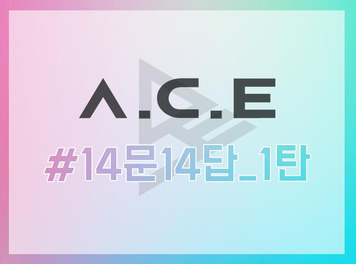 A.C.E #2. 14문 14답 1탄