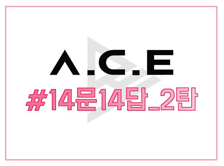 A.C.E #3. 14문 14답 2탄