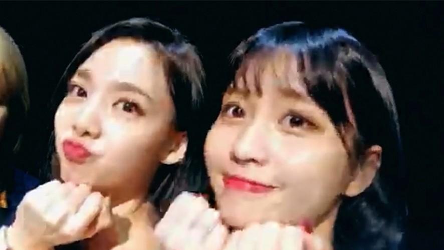 [TWICE] 틋망진창 복숭아즈의 단쓰파티🍑🎶 (Nayeon&Momo's dance)