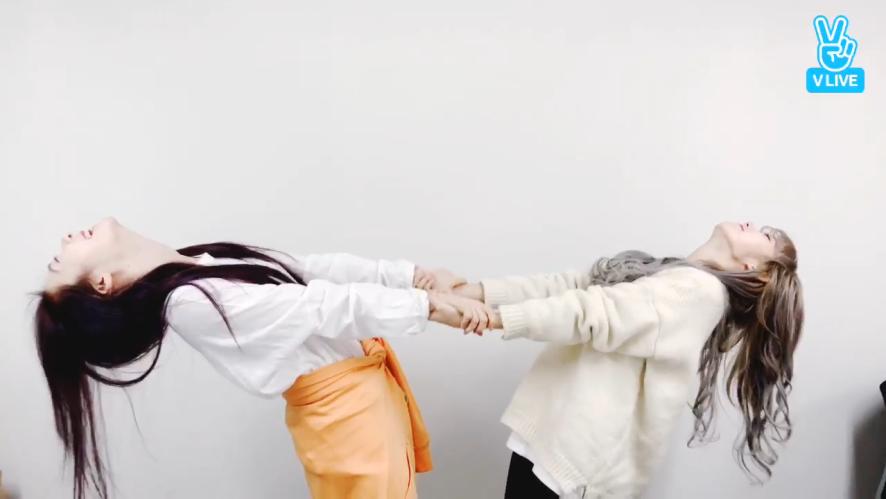 [WJSN] 루다의 웃음치료교실🤣프롤로그(?) (Luda's stretching time)