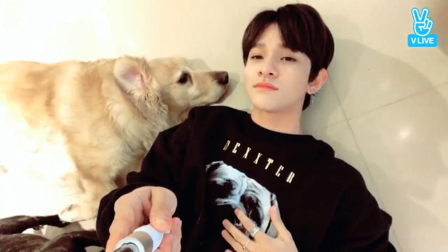 [Samuel] 애견카페에서도 인기백만점 슈스멜뭉🐶🌟 (Samuel visiting a dog cafe)