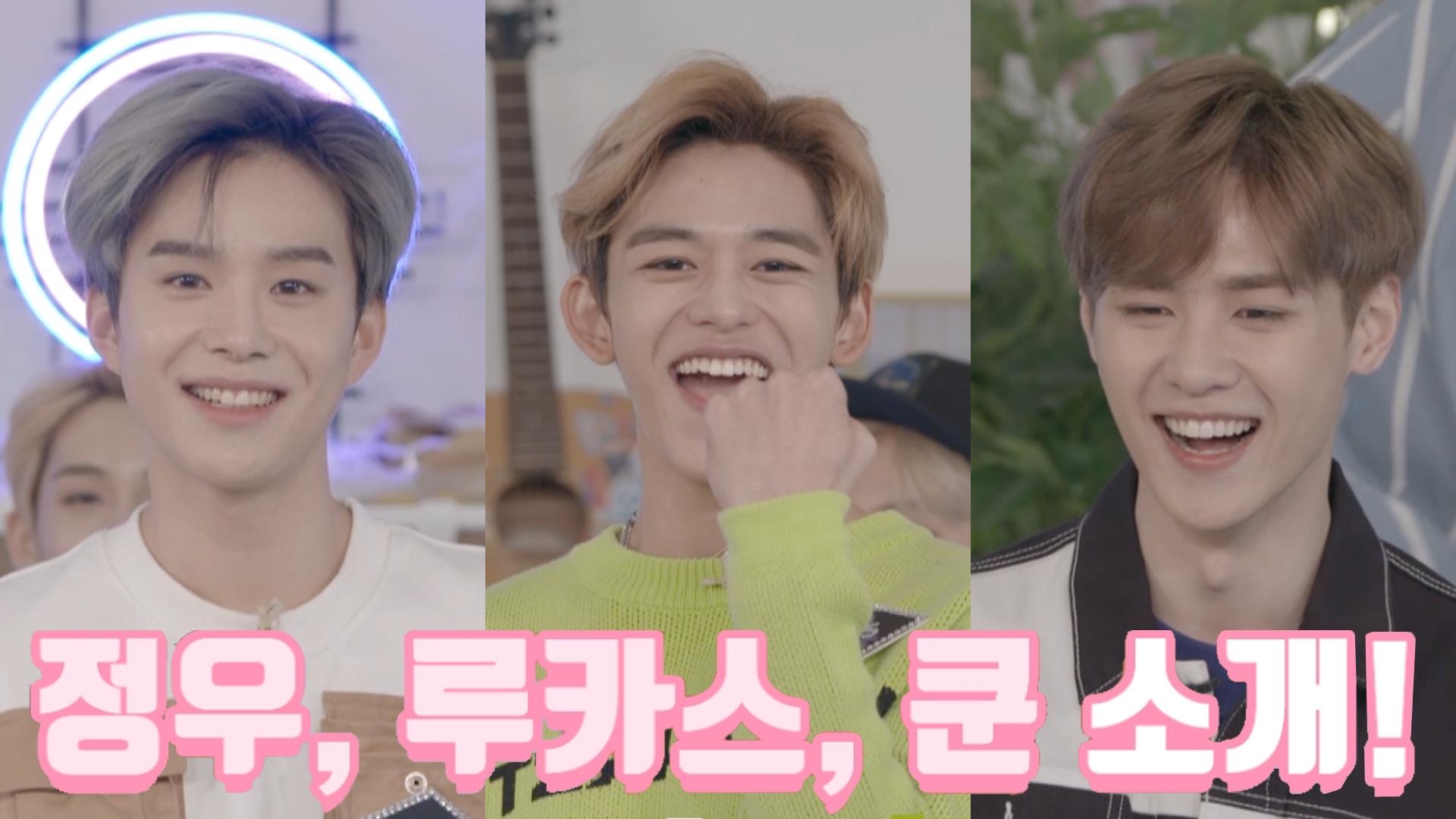 [Vlight] 매력 Don't Stop! 💚정우💚루카스💚쿤💚 (feat. 홍보시티)
