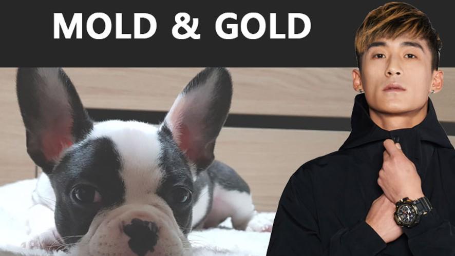 [JINJOCREW] #BBOYMOLD & GOLD