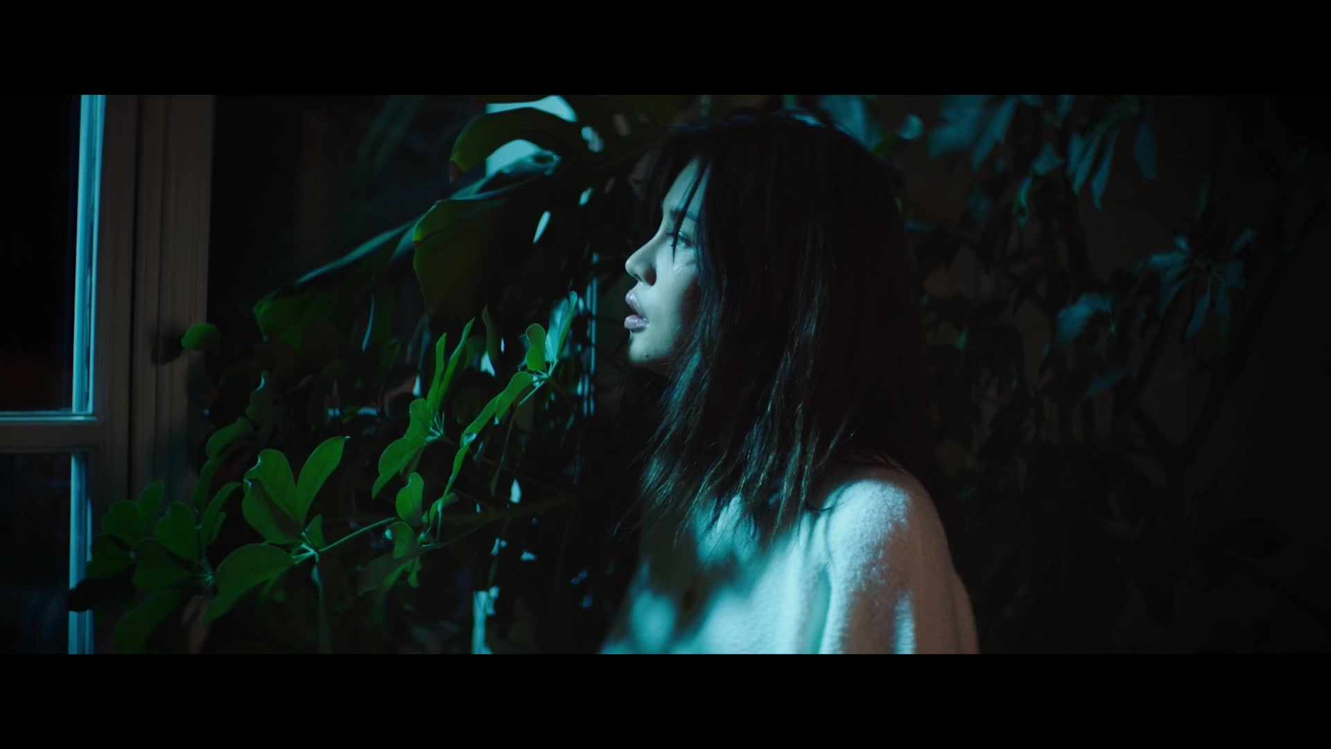 MV_프라이머리, 안다 (Primary, Anda)_월명야 (月明夜) (Feat. 신세하)