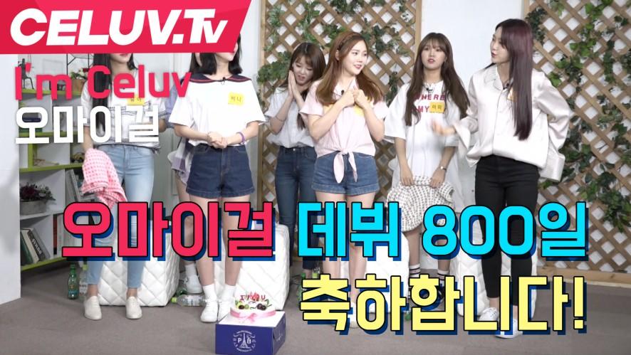 [셀럽티비] 오마이걸 데뷔 800일! 축하합니다
