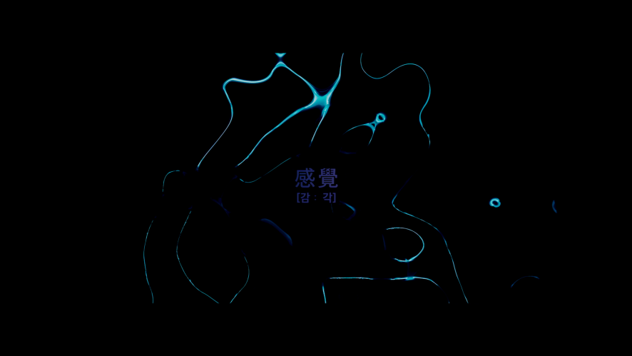[최초공개] UNB 감각 Official Music Video