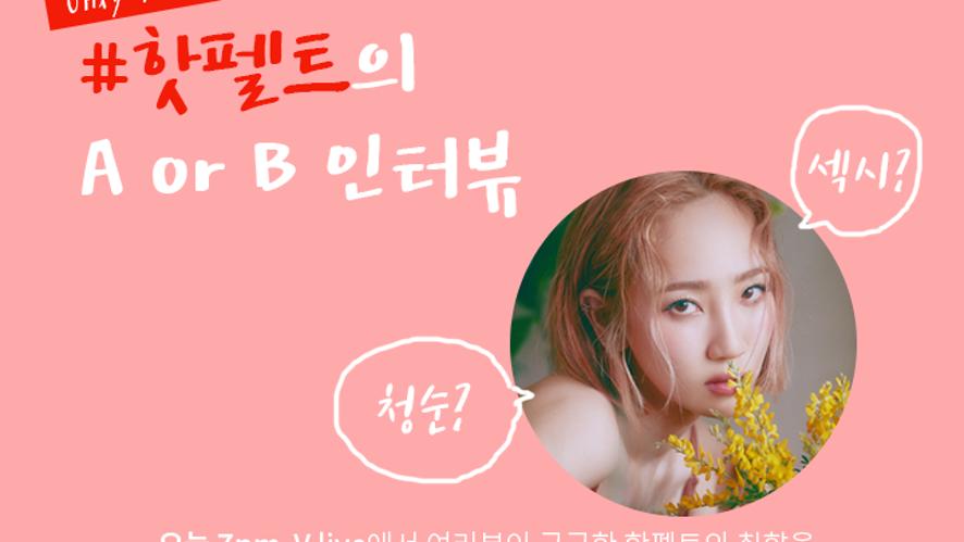 [핫소스] 핫펠트의 소소한 인터뷰 (Feat. 취존A or B)