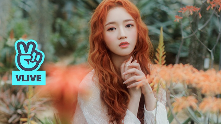 [LADIES' CODE/SOJUNG] LC 소정인가봄🌸🌺
