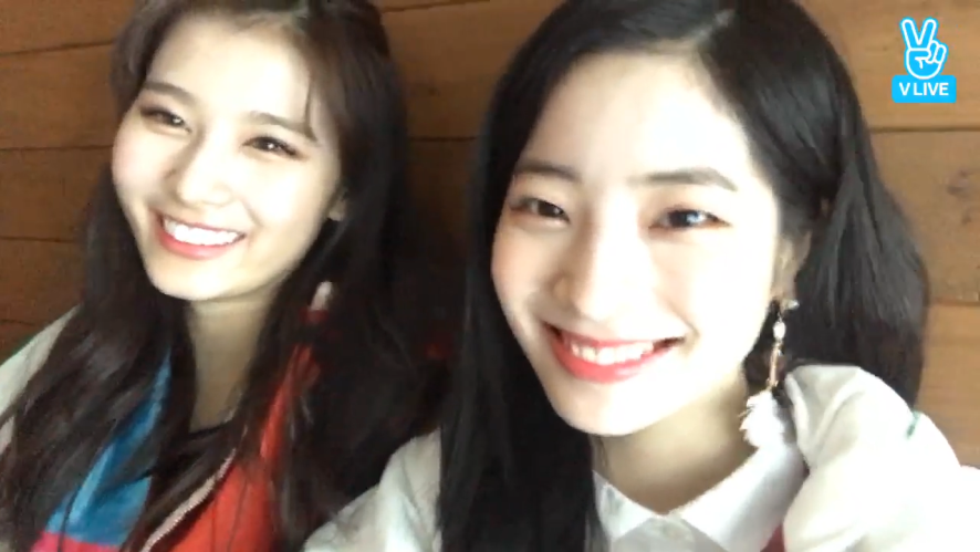 [TWICE] 사이다! 사랑해! 왓이즈럽💕(쩌렁쩌렁) (Sana&Dahyun's thankful messages to ONCE)