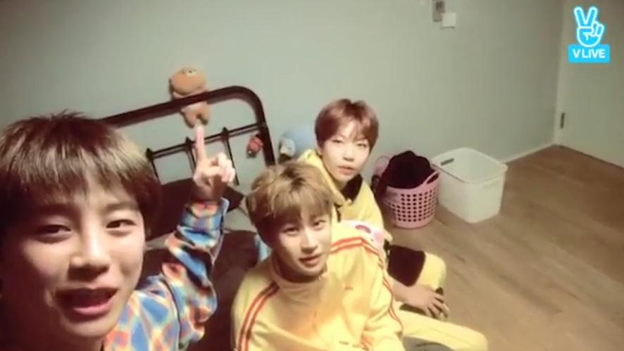 [UNB] 마의중 큐티루빠띠루한 큰방 췌초소개할게여✨(UNB introducing their room at the dorm)