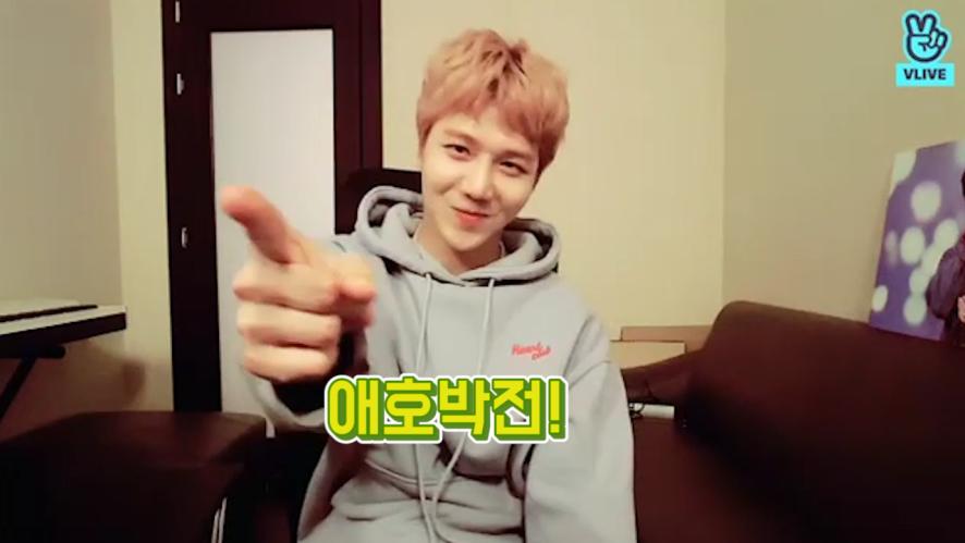 [PENTAGON] 조지노 애호박전 길만 걷자❗️ (JINHO liking greenpumpkinpancake)