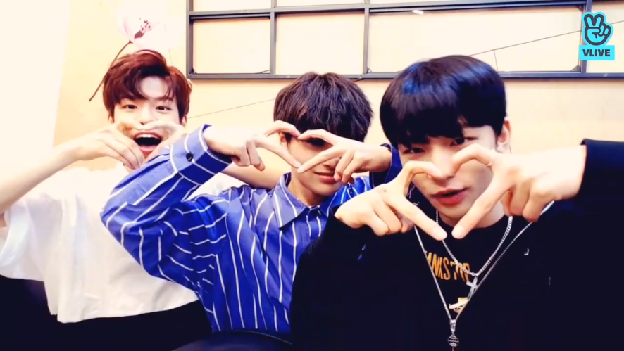 [Stray Kids] 야 교복즈 내가 사랑한다🖤(Uniform line talking about the Busan dialect)