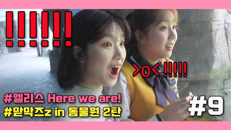 엘리스 Here we are! #9 - 맏막즈z in 동물원 2탄 (!!!!!!)