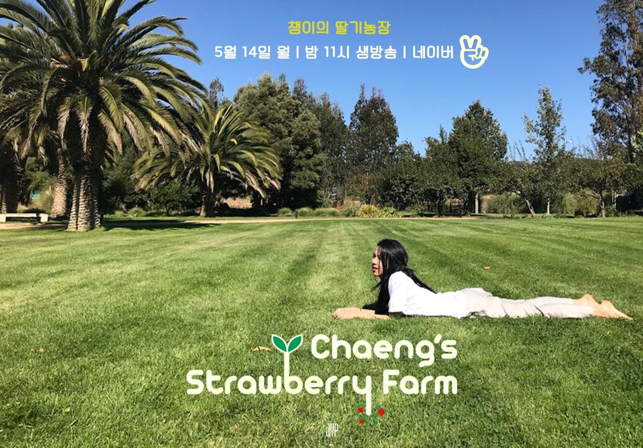 CHAEYOUNG's STRAWBERRY FARM
