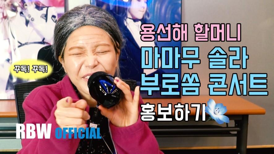 [Special] 솔라감성 부산 콘서트 홍보 영상
