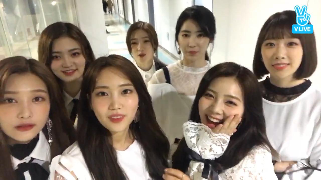 [DIA] 비오는 날에도 얌순이들은 참지 않긔🌧️ (DIA's V after their Dream concert stage)