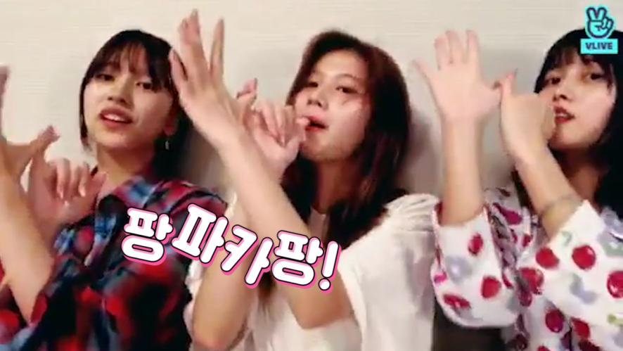 [TWICE] 쎄이! 미사모! (미사모!) 쎄이! 팡파카팡!🎉 (So cute Mina&Sana&Momo)