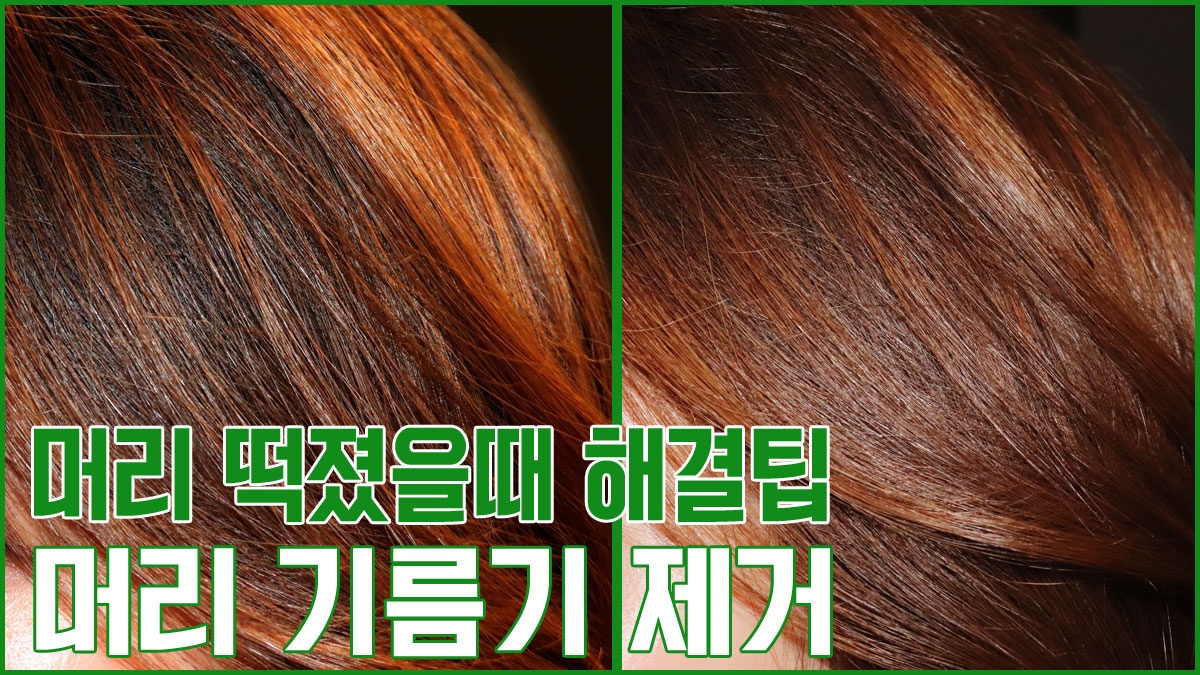 [1분팁] 머리 떡졌을때 해결팁 : 헤어파우더로 머리 기름기 제거하기