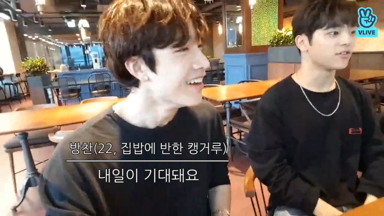 [Stray Kids] 슼둥이들(feat.한마리의 캥거루)의 오rr가닉한 집밥 먹방(Stray Kids eating JYP cafeteria)